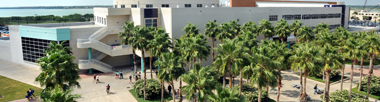 Building complex with palm trees